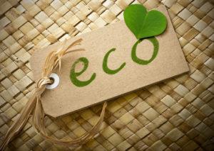 eco-friendly businesses
